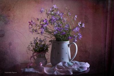 Вспоминая лето натюрморт цветы колокольчики красота лето