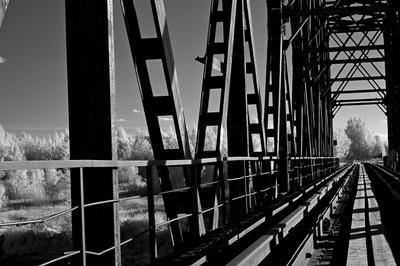 ***Ярославль.Ярославская губерния.Р.Ф.2021г.г. от Р.Х. Инфракрасная,чёрно-белая,монохромная, фотография. (infrared imaging)