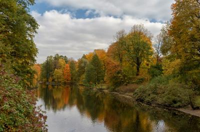 Осень в парке* СПб парк осень
