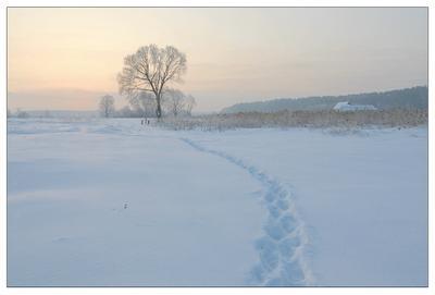 Морозным утром февраль утро снег мороз