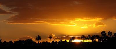 Острова вечной весны солнце закат пальмы