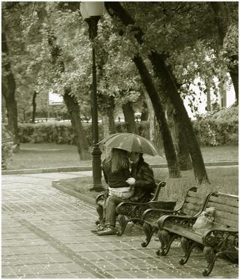 Двое под зонтом дождь ззонт двое скамейка пруды