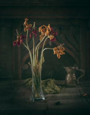 Засыпают.... натюрморт тюльпаны ваза грусть