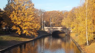 Осеннее золото. Riga Рига Городской канал