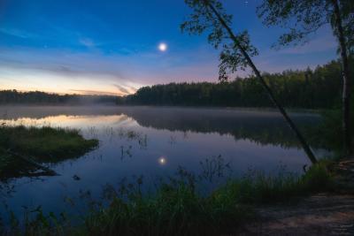 """""""Звездная летняя ночь на лесном озере"""" владимирская область киржачский район ночь ночной пейзаж звездная лунная лунный свет летняя лесное озеро березы"""