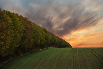 Весеннее поле весна закат поле природа небо облака деревья