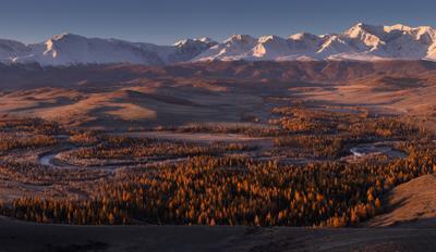 Курайский рассвет Горный Алтай Чуя Курай Курайская степь горы Северо-Чуйский хребет осень октябрь лиственницы