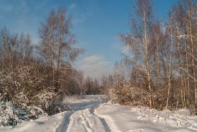 *** зима снег небо облака деревья