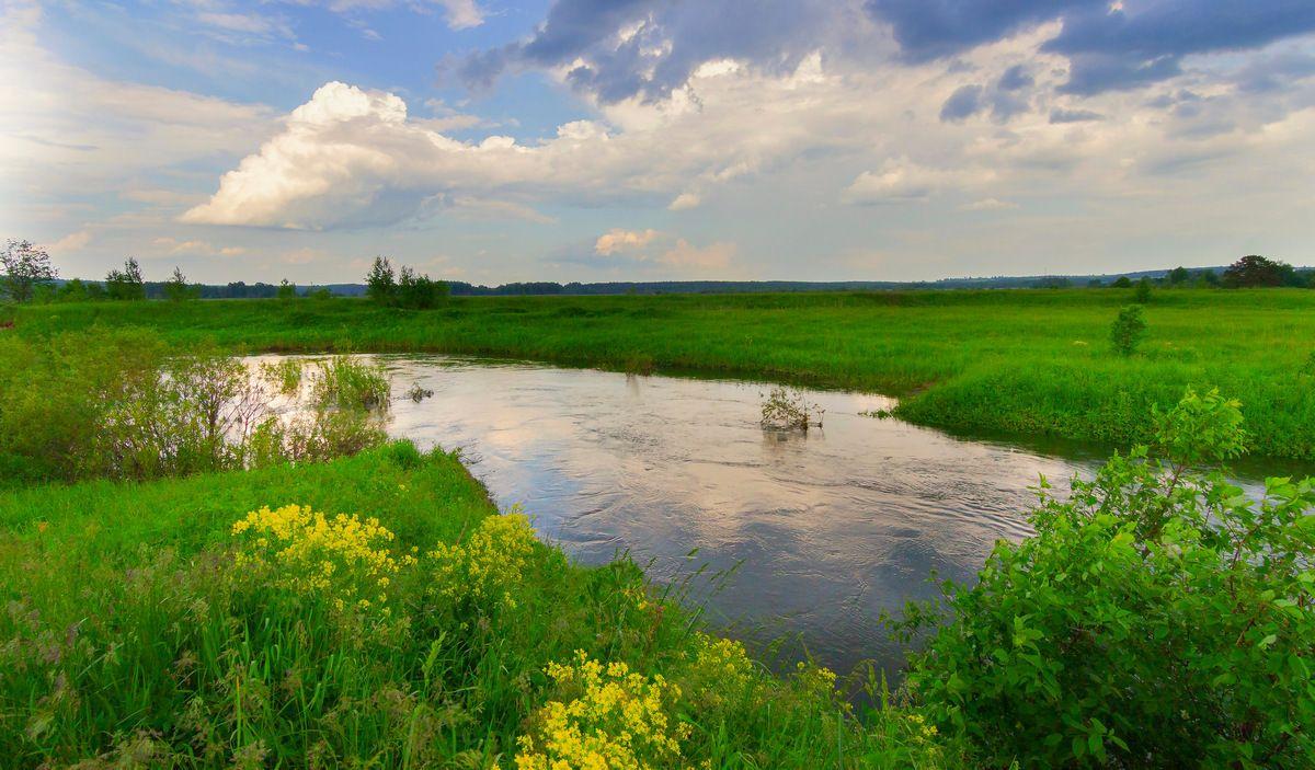 Дождями полноводная река