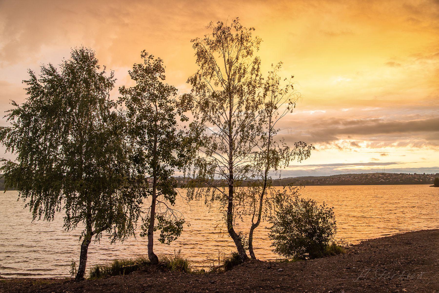Закат на пруду дерево лето пейзаж природа небо Пермский_край вечер закат