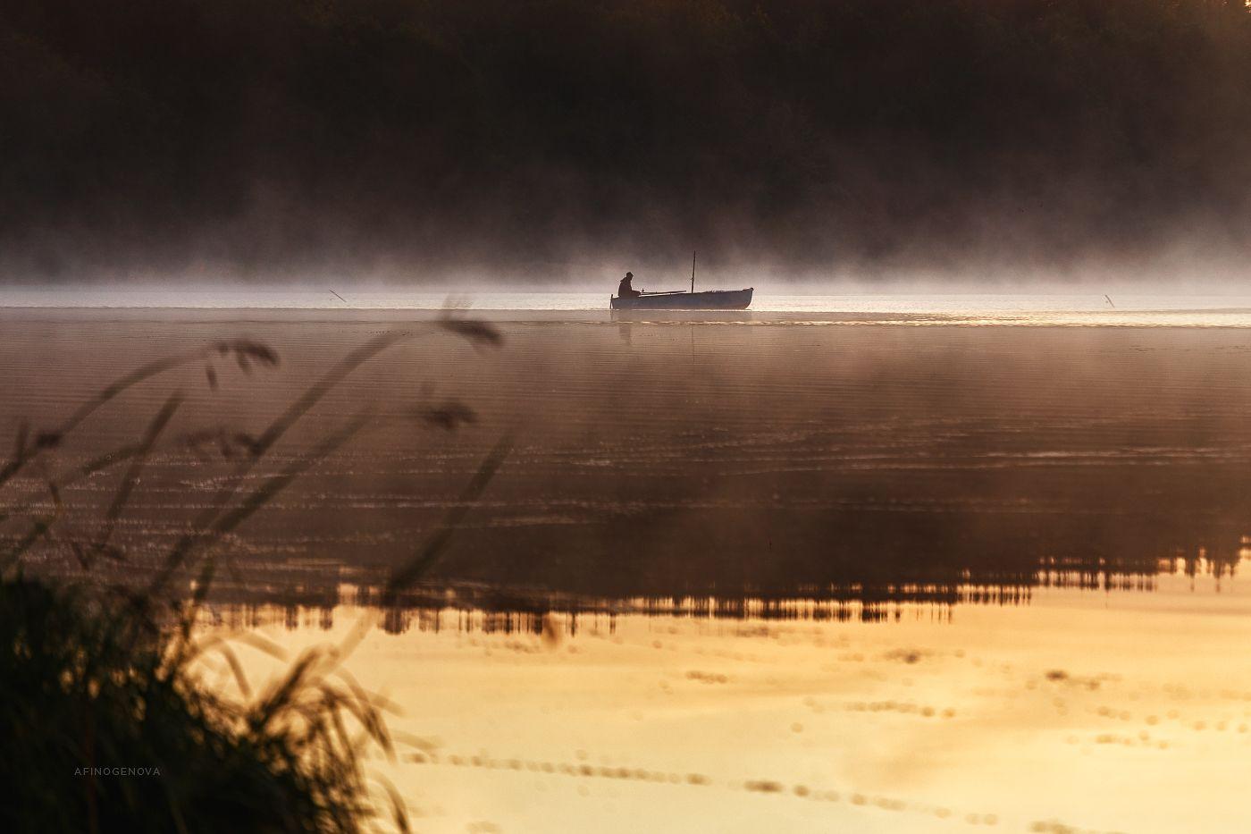 ### утро рыбак туман