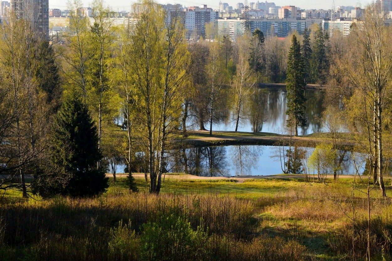 В парке весеннем......
