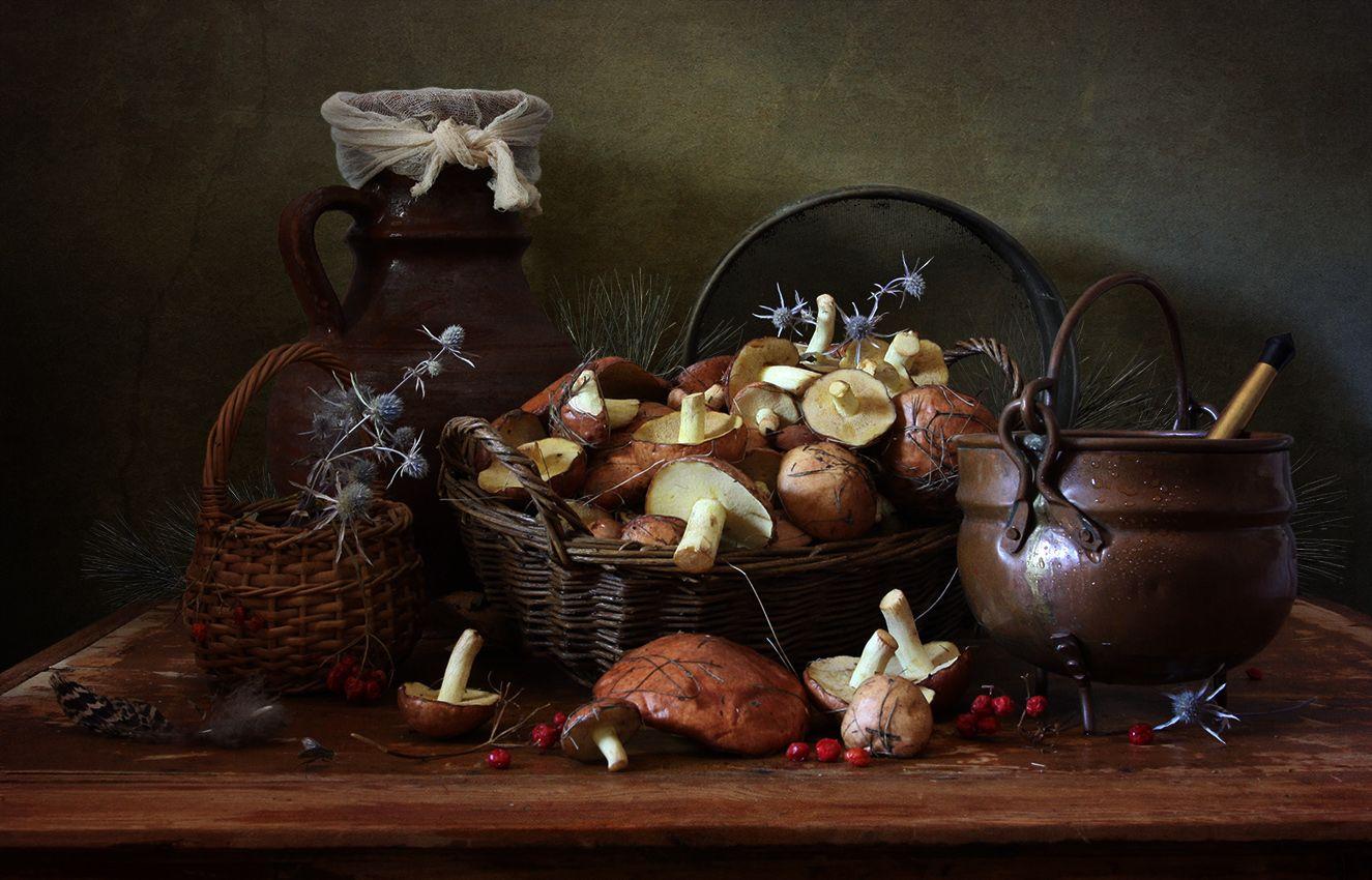 Маслята маслята грибы котелок крынка