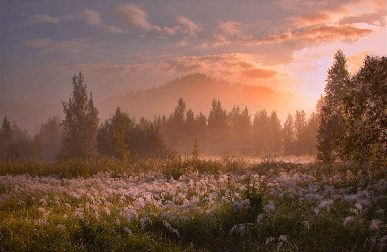 Озарённые светом Пейзаж лето Сибирь красивые места России