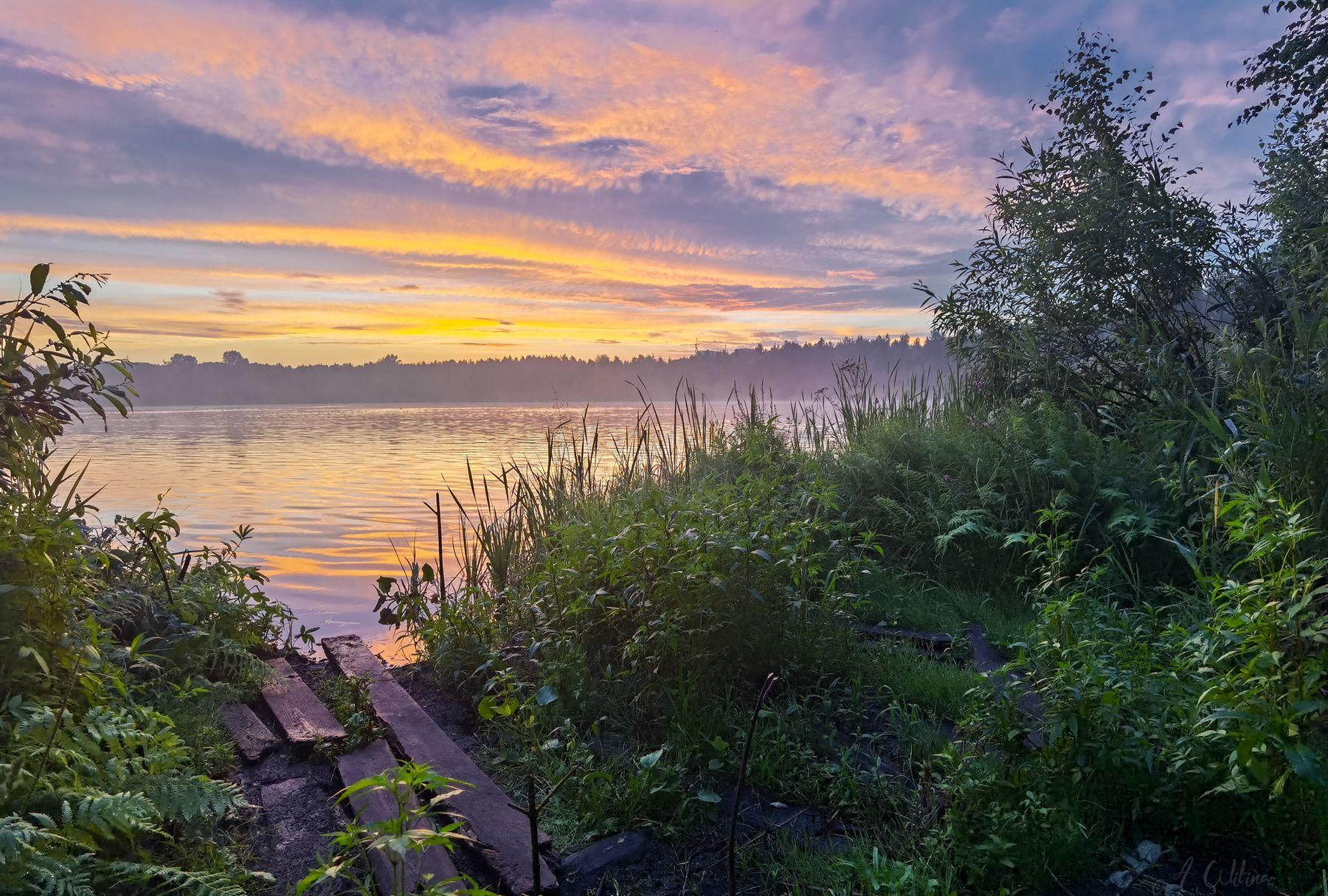 *** озеро облака берег лес закат березы вечер лето
