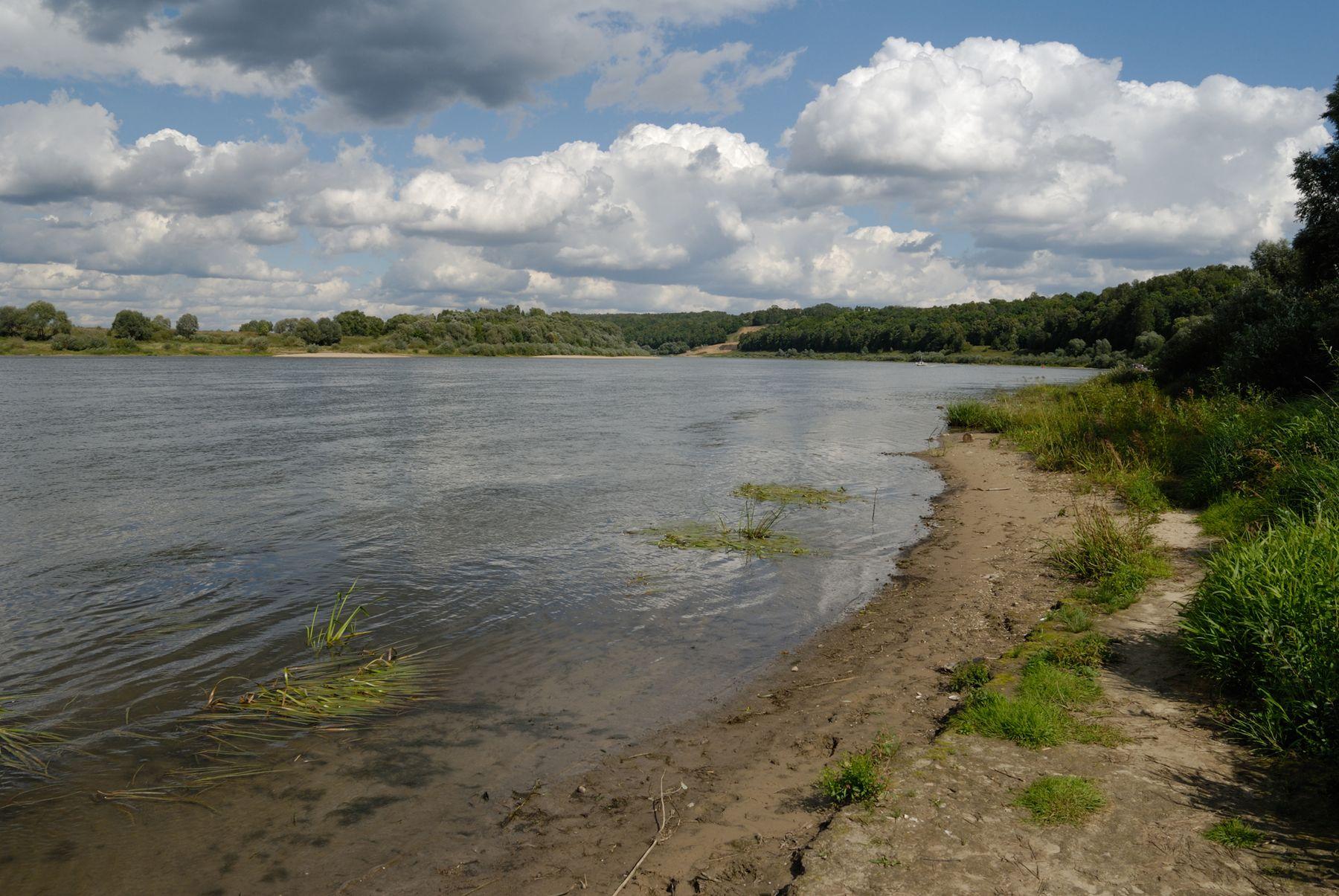 Вид на Оку Россия Тульская область Поленово пейзаж Ока лето