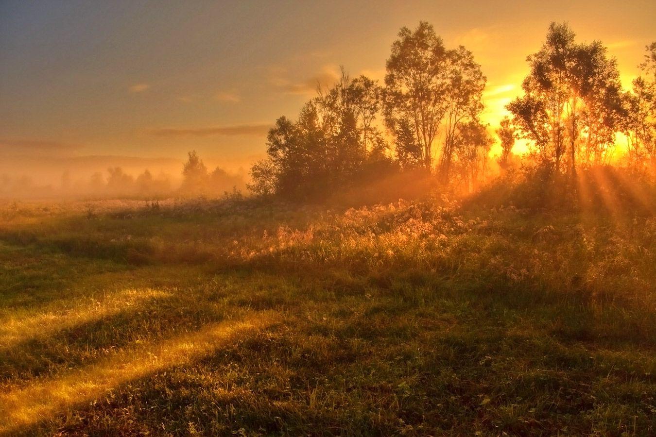 Солнечная палитра рассвета Рассвет пейзаж