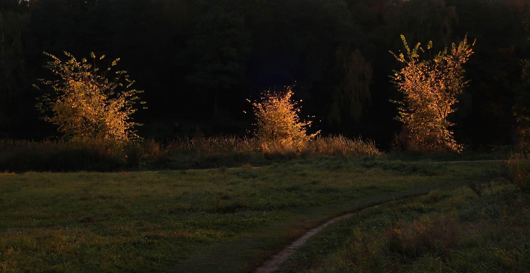 *** природа осень