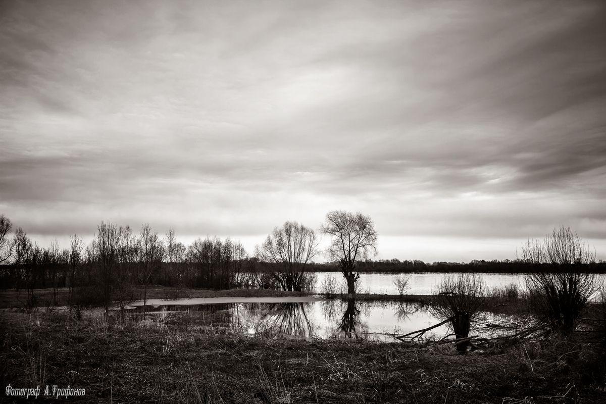 Разлив Весна Апрель Река Ока Разлив Муром День Дождь Пасмурно Отражения Деревья Облака