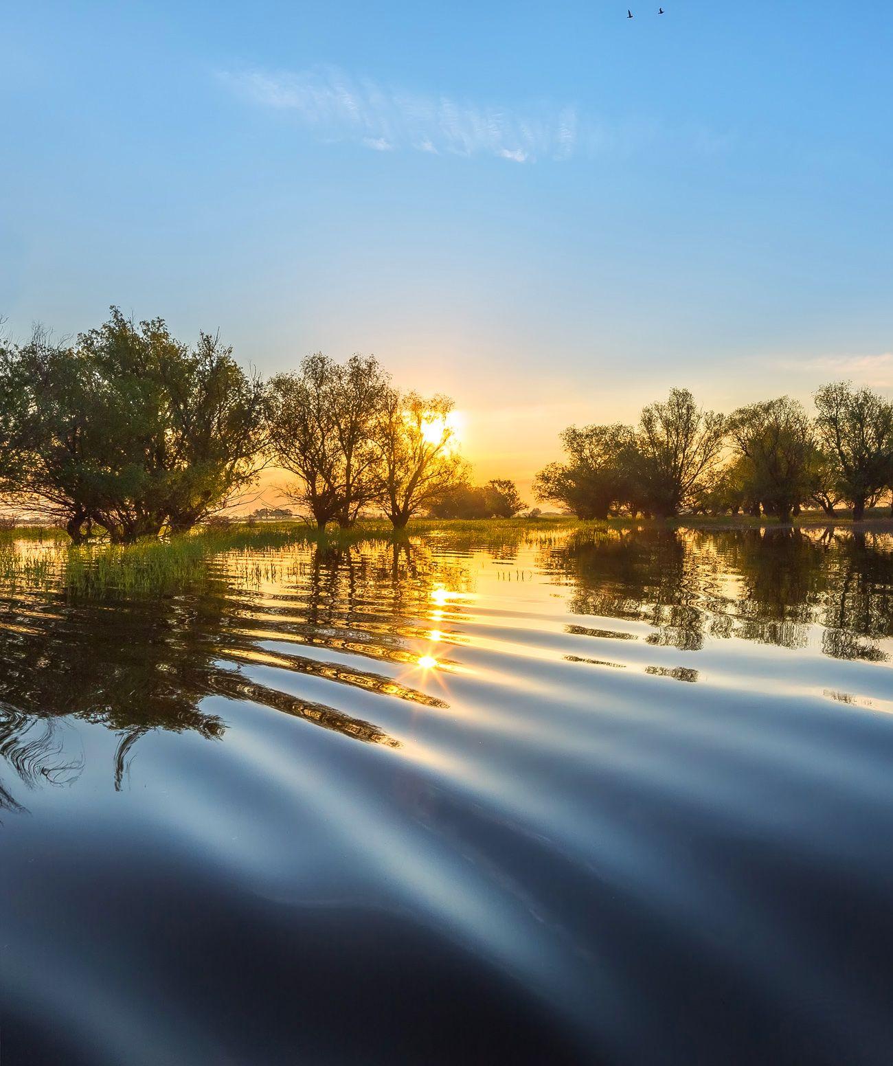 Шёлк воды Река Волга вода рассвет деревья половодье волны