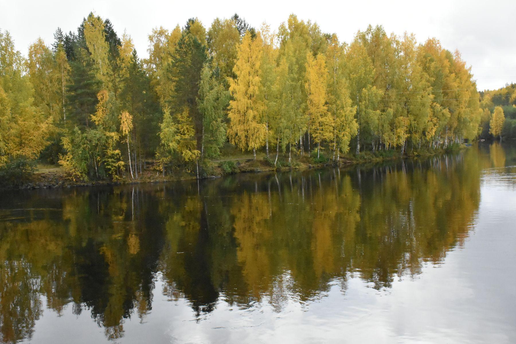 русло реки река Гирвас