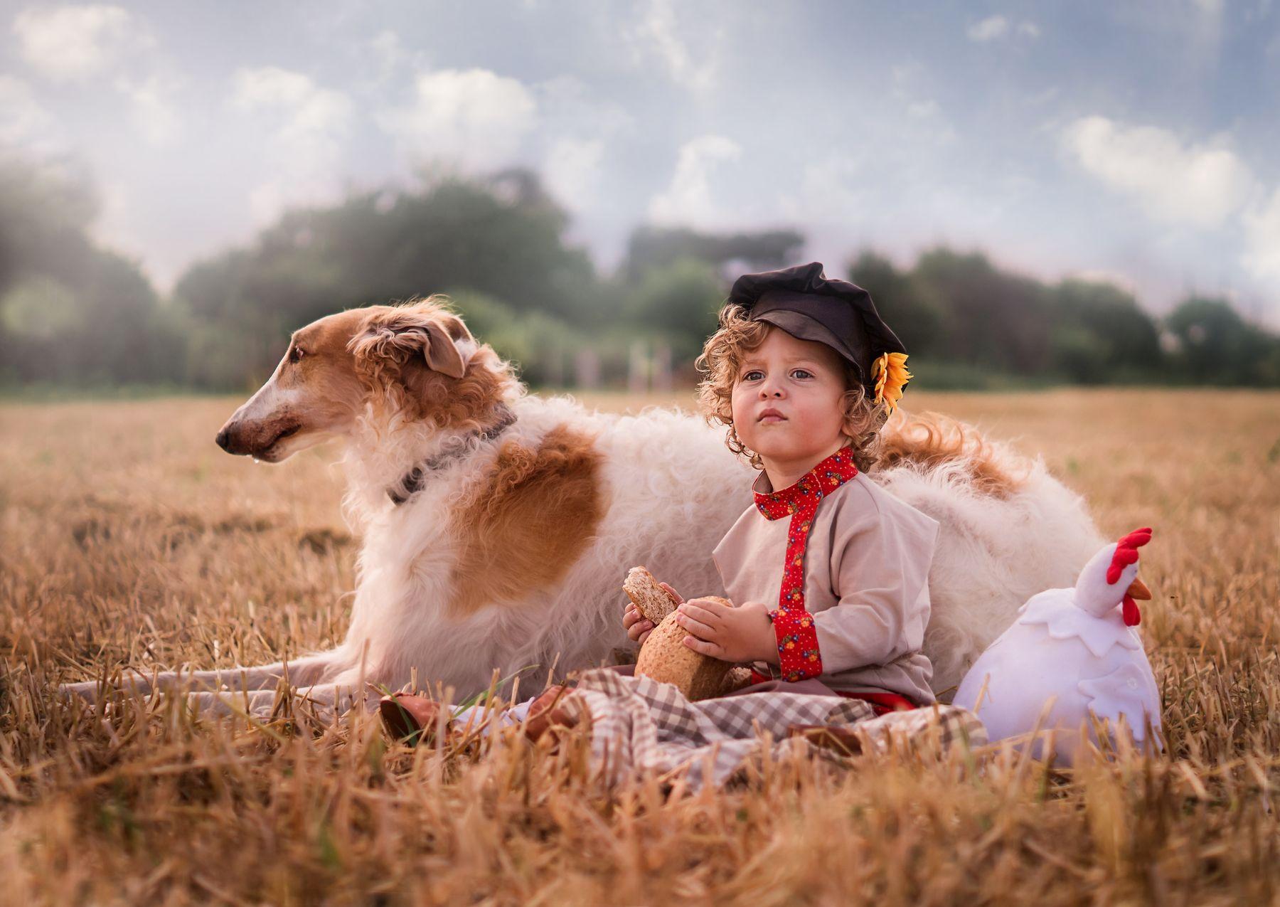 Выйду ночью в поле с конём... мальчик поле собака борзая лето портрет ребёнок малыш