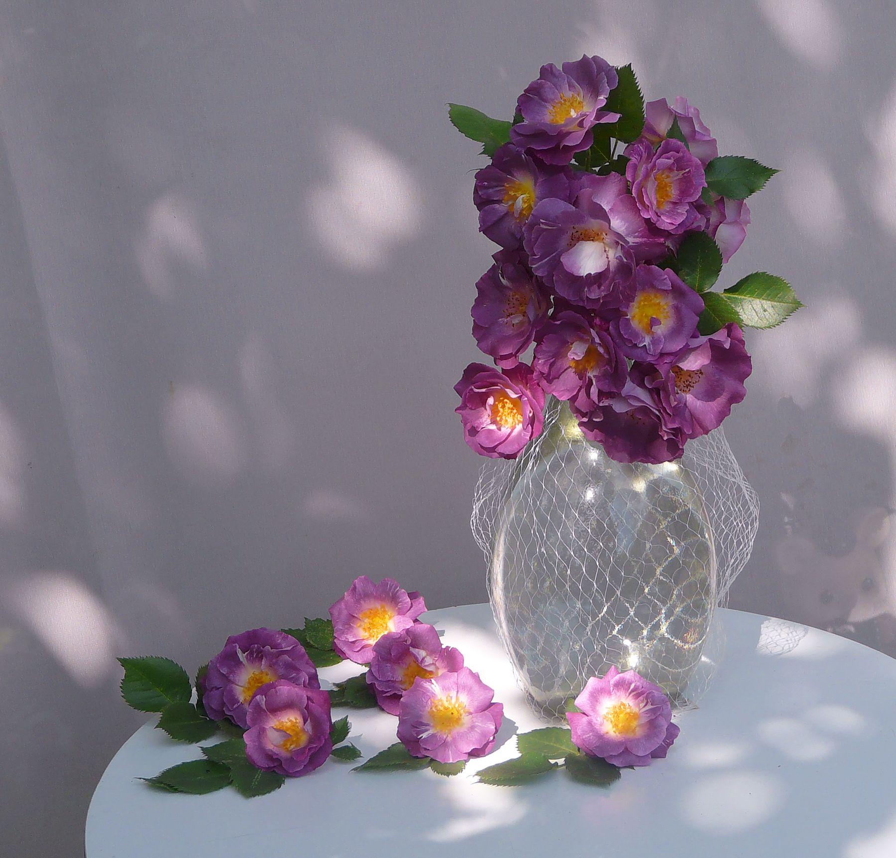 ...этюд с розами...
