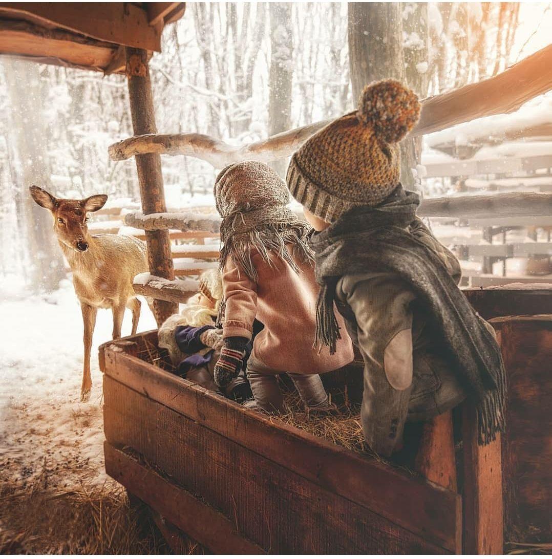 Неожиданная встреча Дети художественнаяфотография детскаяфотосессия снег олень