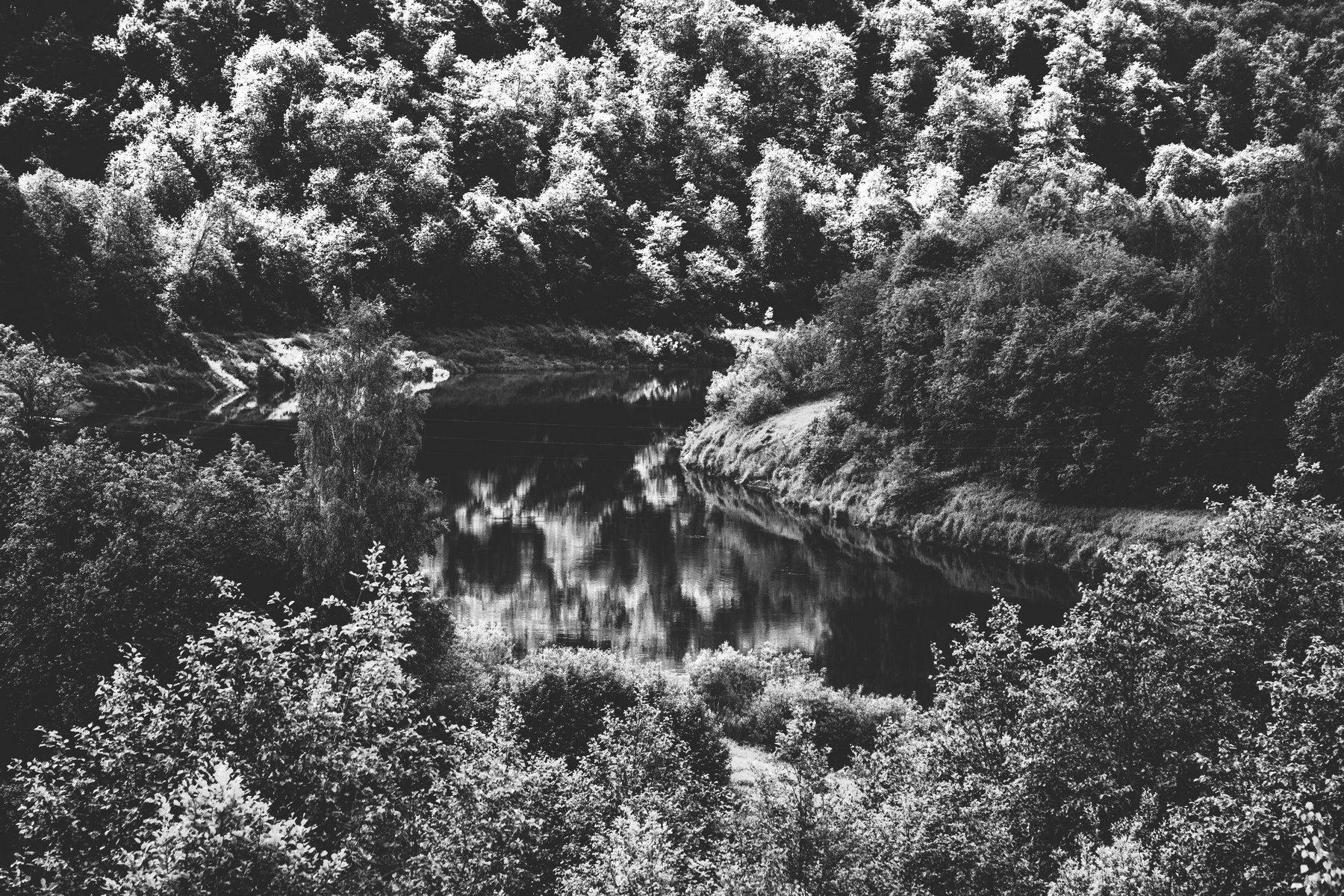 Средь лесов