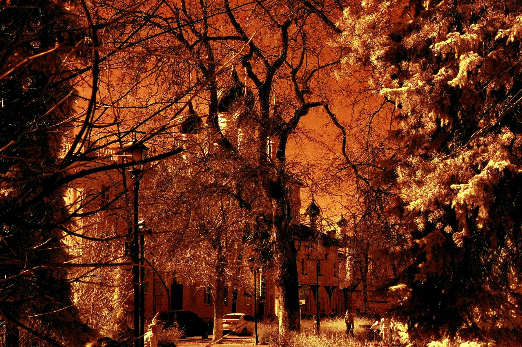 Апрель.. Монастырь. Центр. г Ярославль.Р.Ф.2021г.г. от Р.Х. Инфракрасная,чёрно-белая,монохромная, фотография. (infrared imaging) Инфракрасная чёрно-белая монохромная фотография infrared imaging