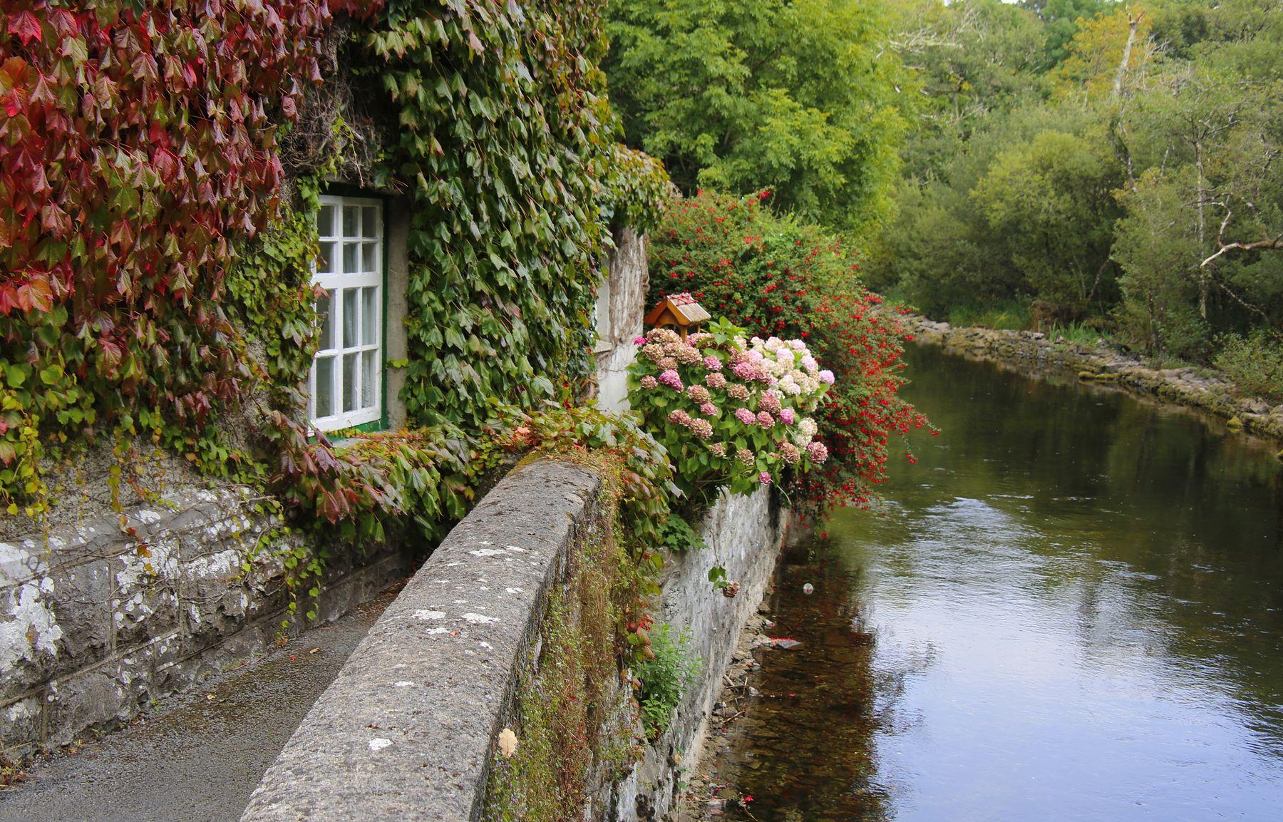 ***  ...просто  домик у воды... дом осень цветение Ирландия уют