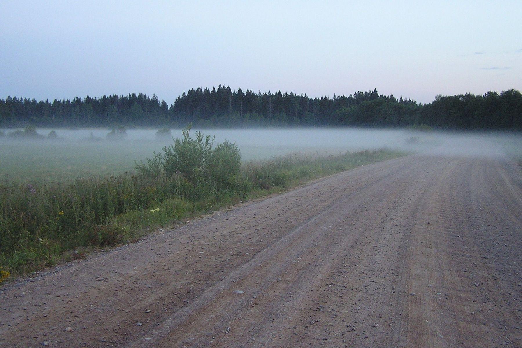 Упал туман...