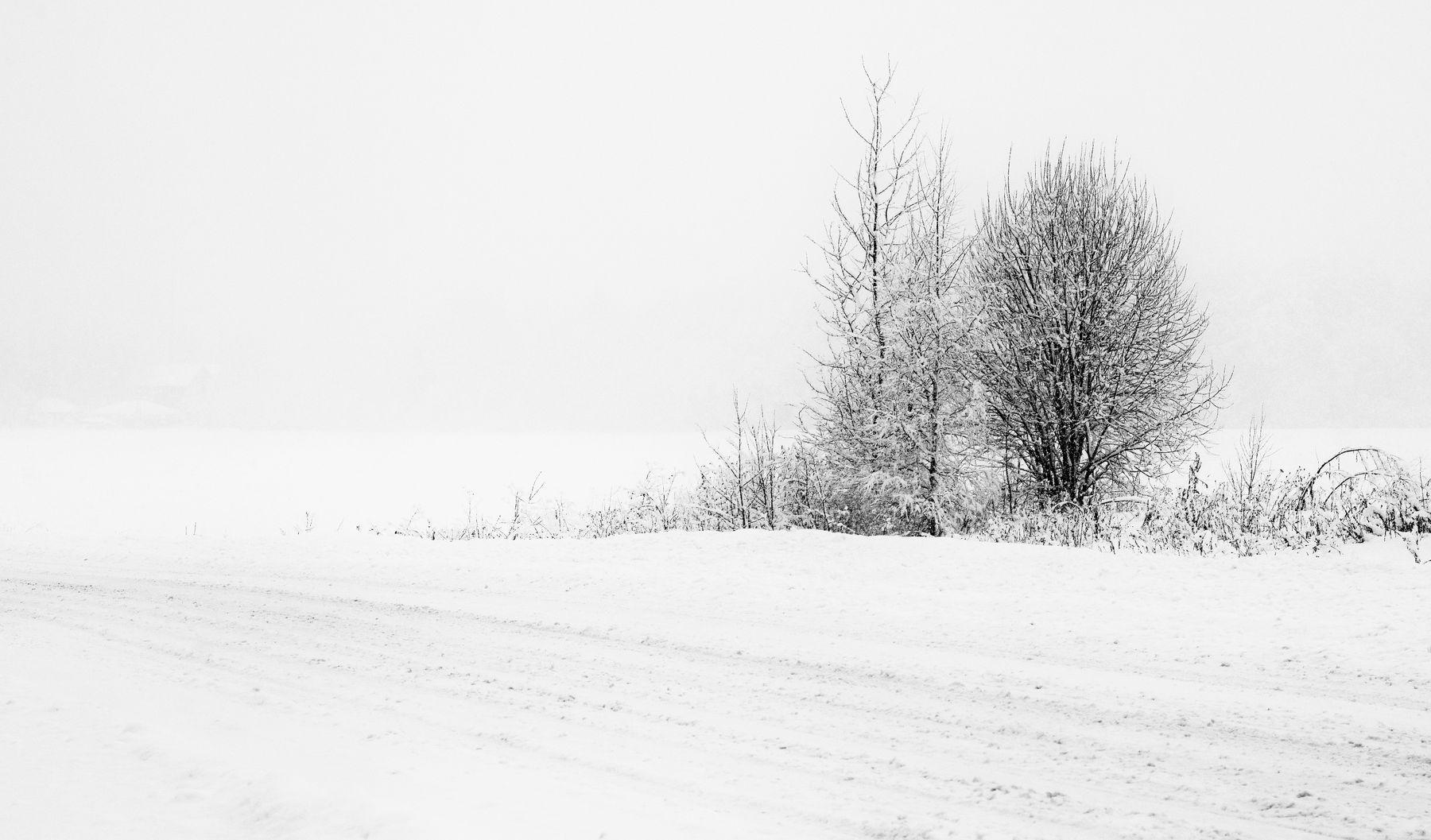 """""""Опять метель: две вечности сошлись в один короткий день..."""" зима метель дорога"""