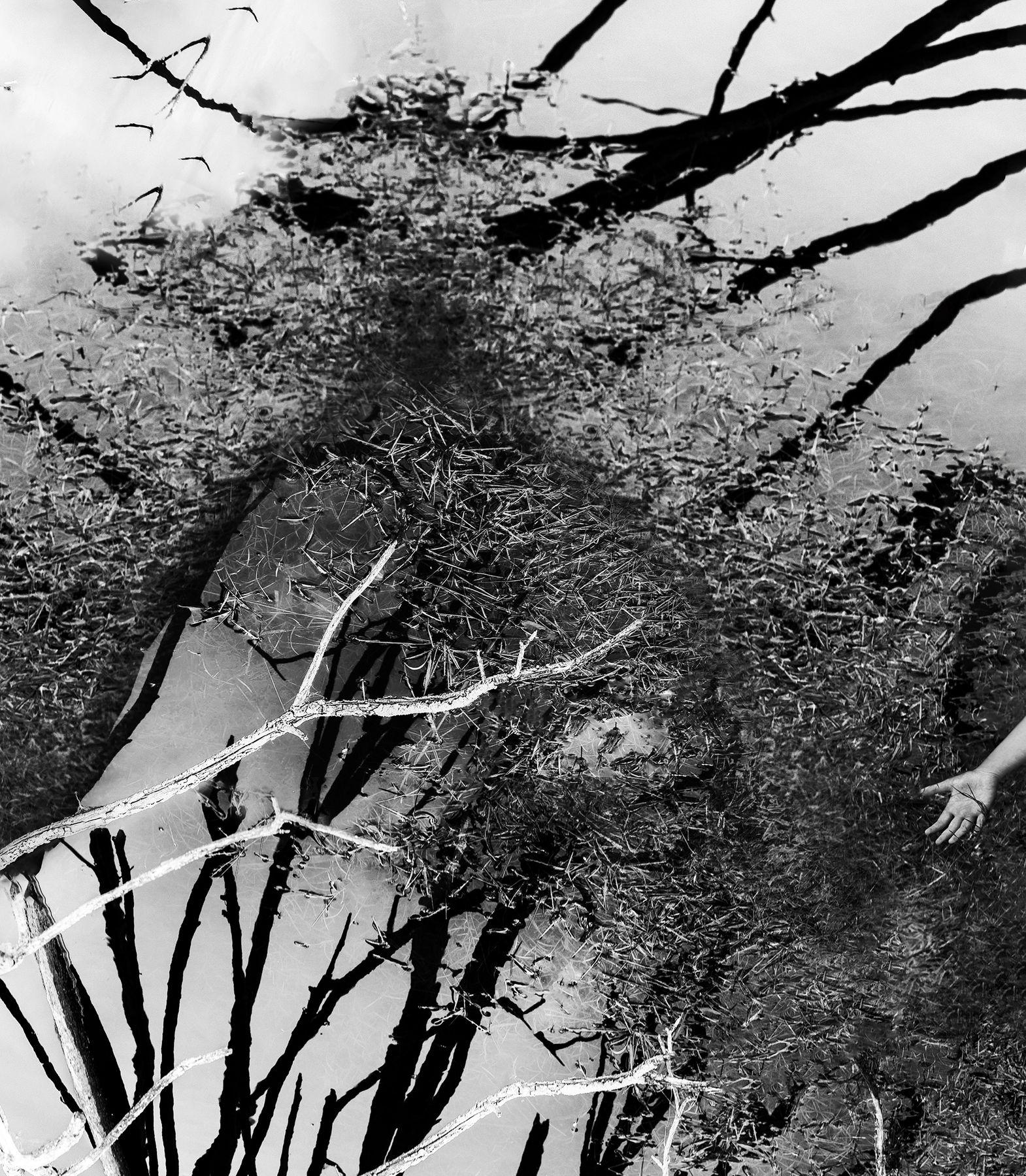 Ловушка для снов чб арт ладонь природа