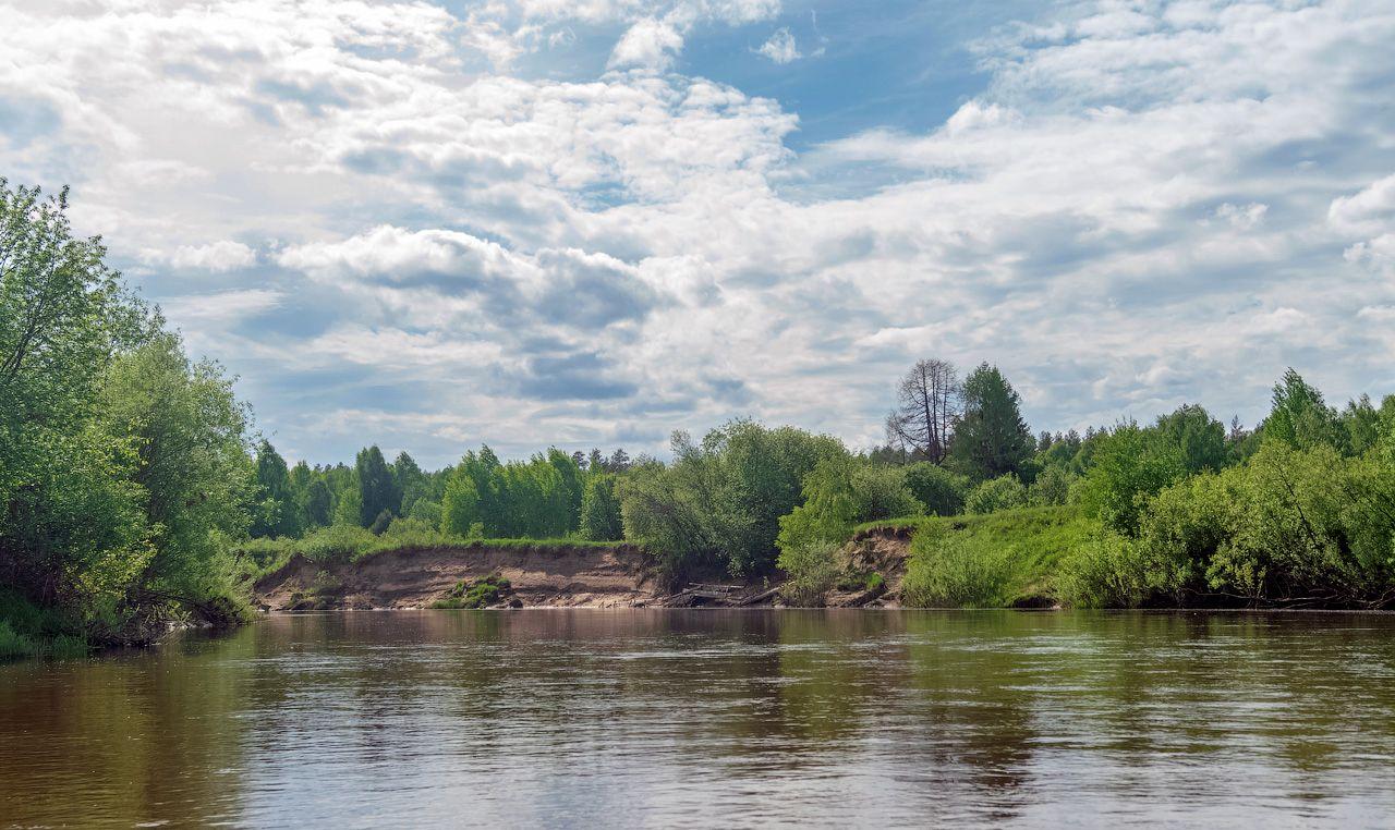 река Нея нея река лето природа пейзаж вид вода кострома отдых путешествие сплав