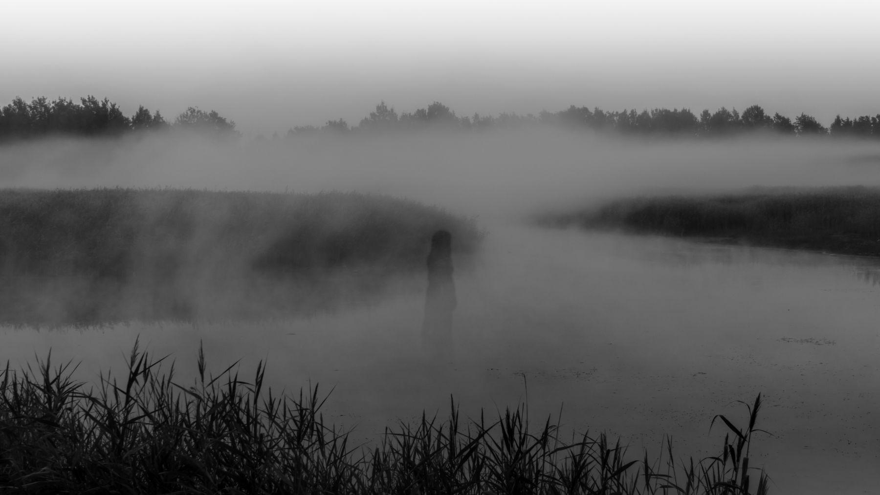 Что-то мне привиделось в тумане