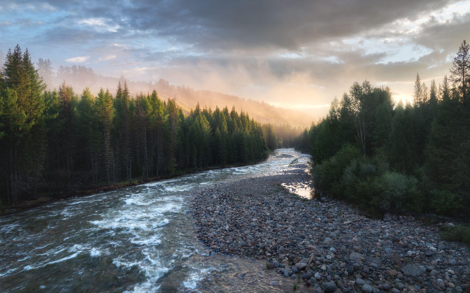 Золото над рекой алтай горный горы горная река кубадру долина утренний туман золотой час тайга таежный лес улаганский район