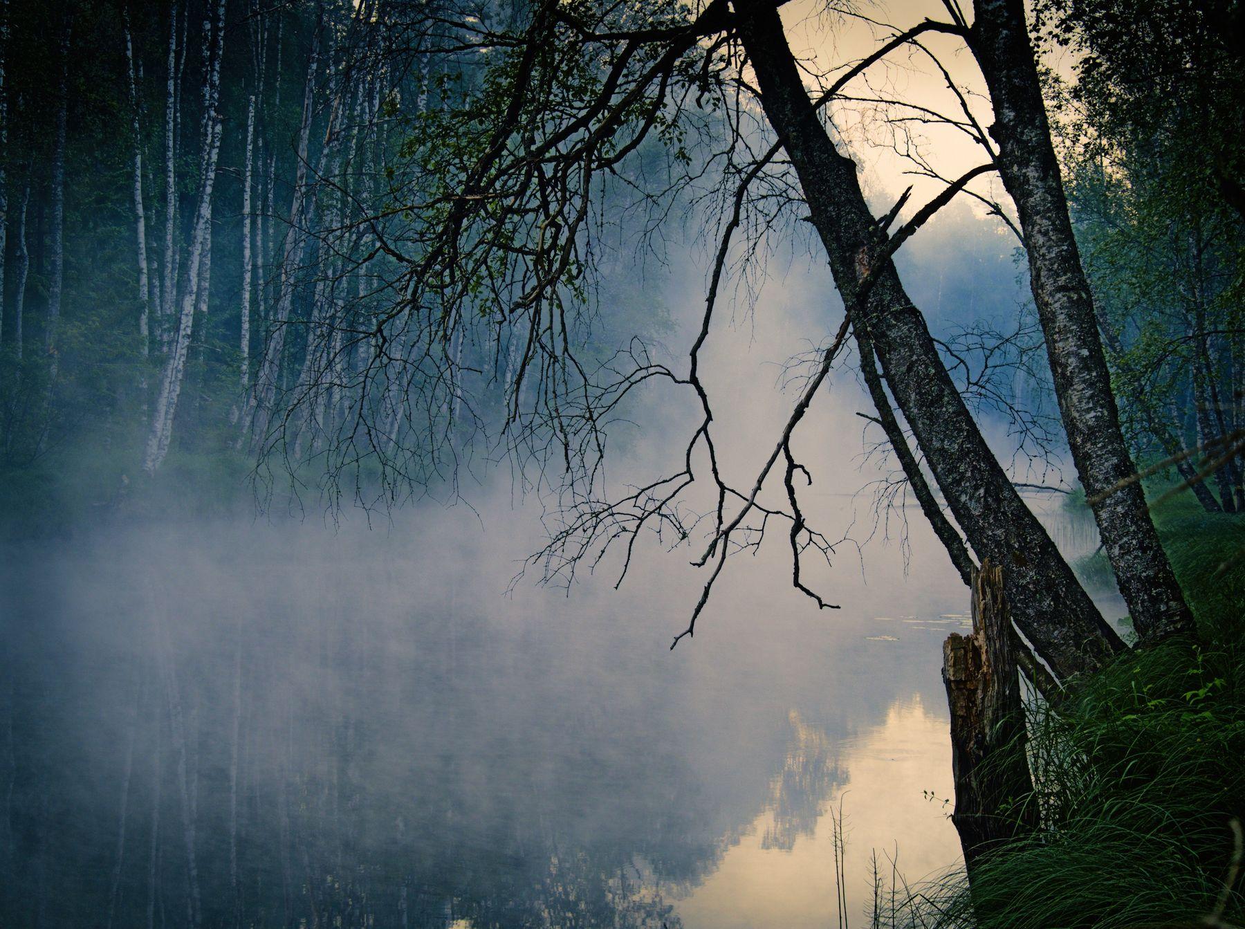 Волчья река утром летнего солнцестояния (4) летнее солнцестояние река Купала