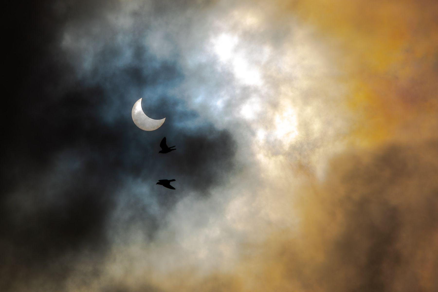 Затмение Солнце затмение луна небо