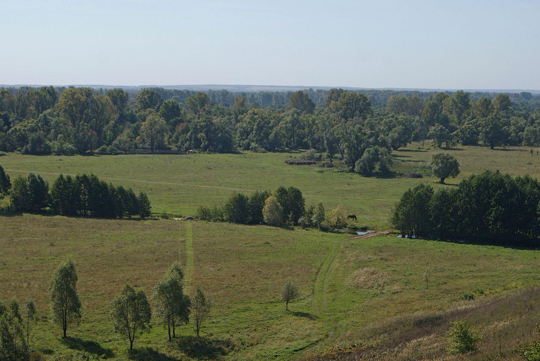 В начале сентября простор пейзаж сентябрь