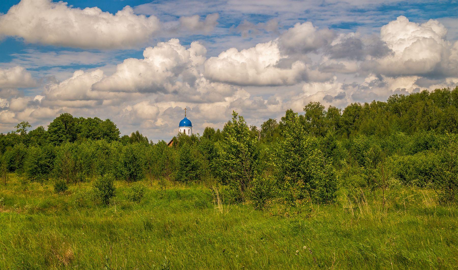 Храм за лесом