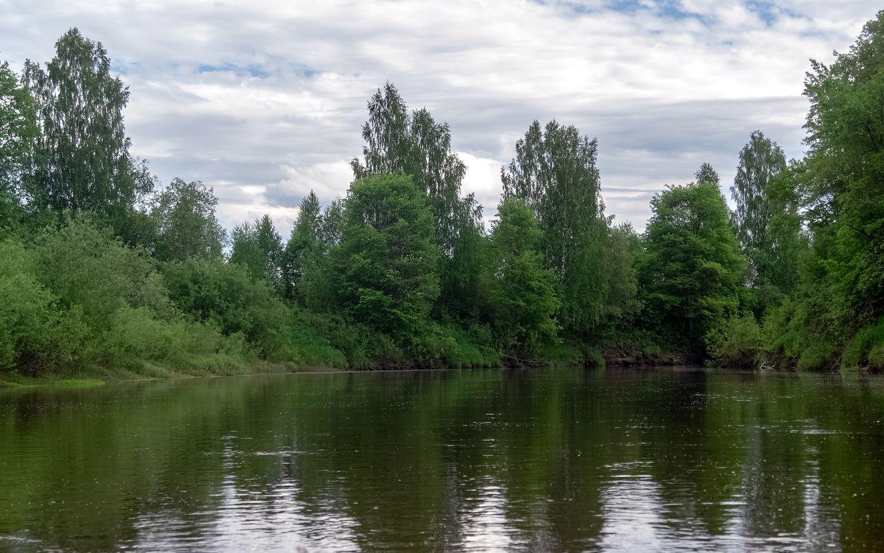 река Нея нея река весна природа пейзаж вид вода отдых путешествие тотомица поход сплав