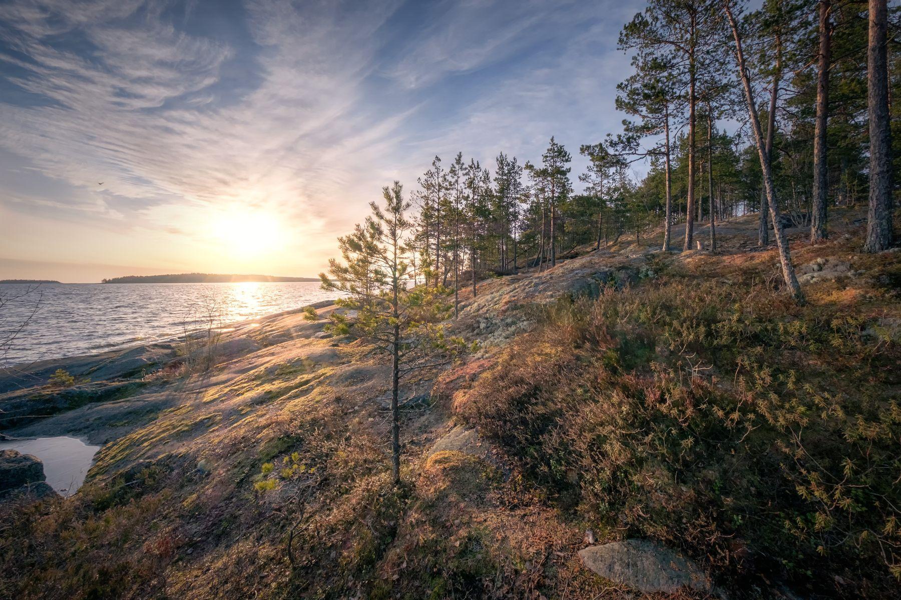 Ладожский берег ладога скалы рассвет солнце лужа лед деревья облака пейзаж природа