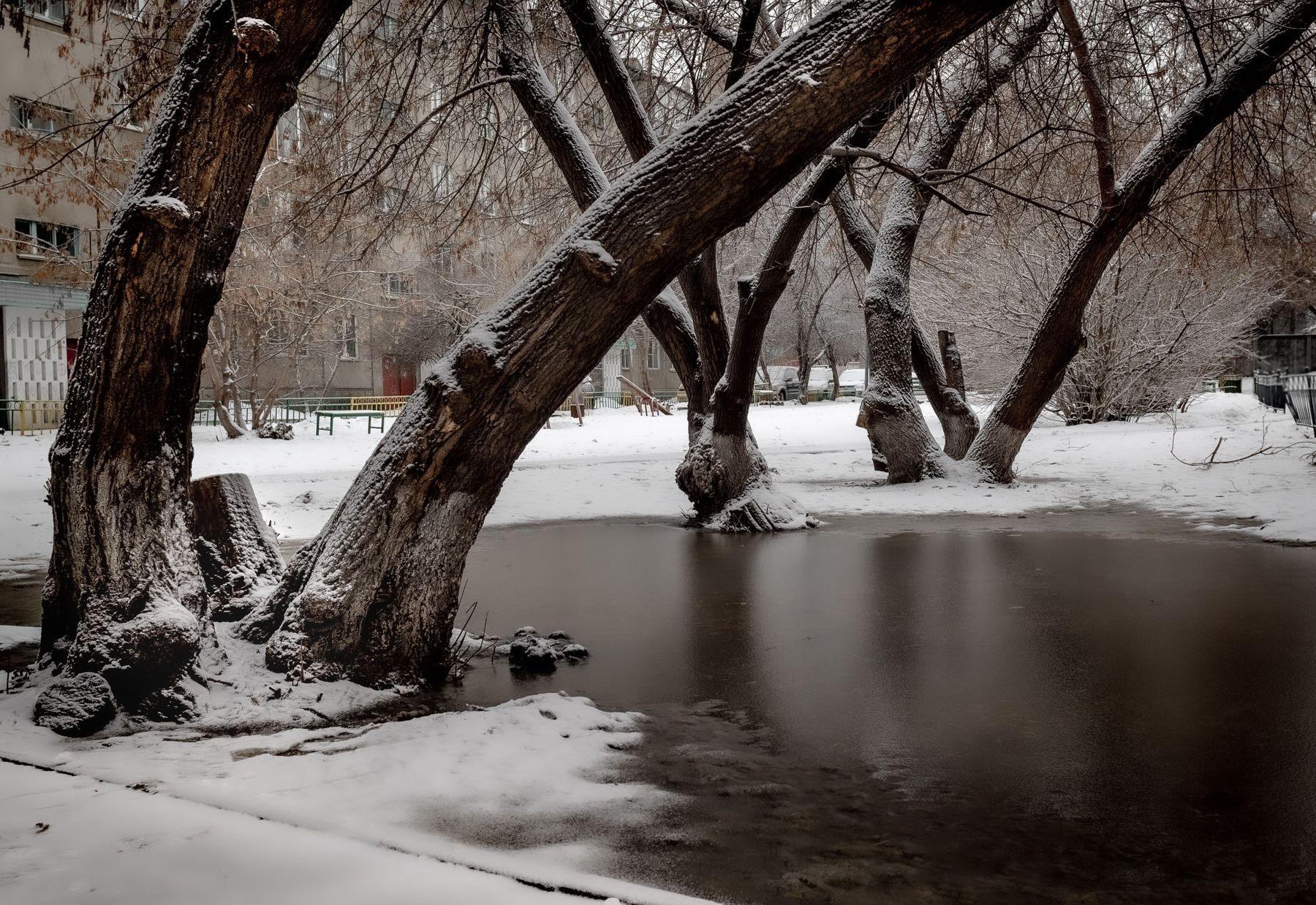 Оттепель. Город деревья снег лужа