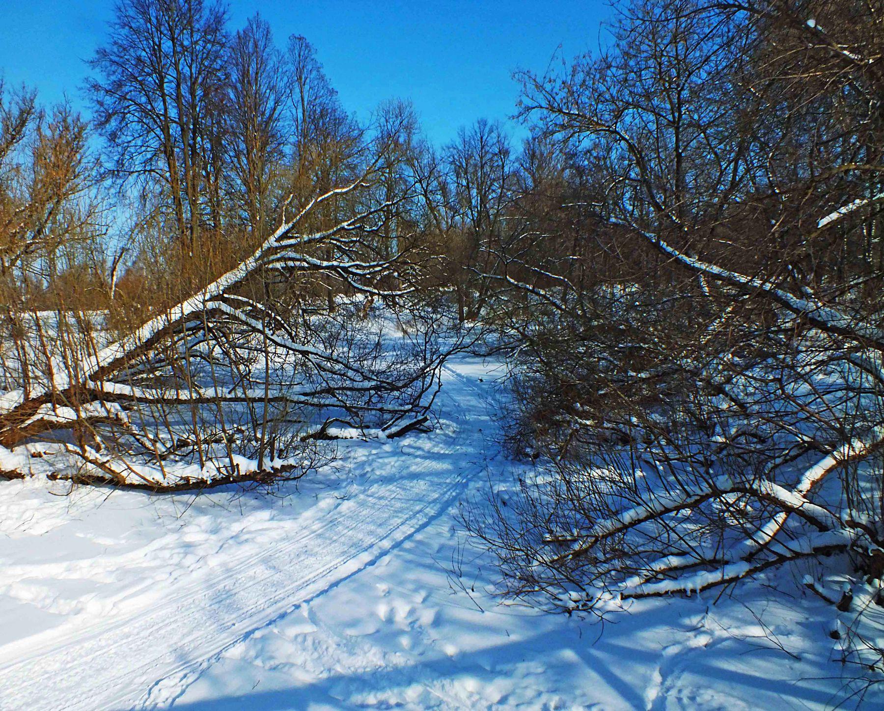 Дорога в дебри зима снег мороз Баташи