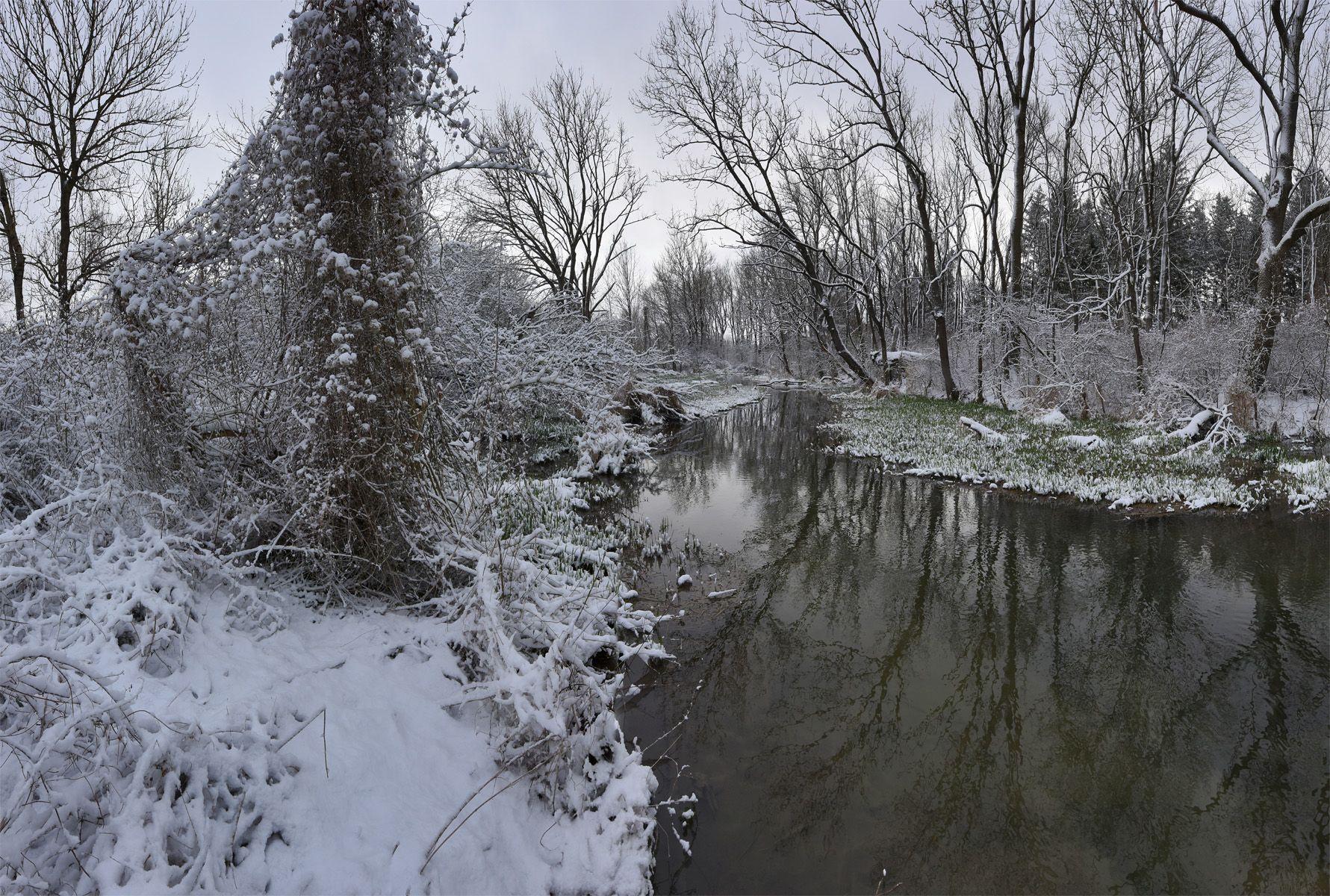 Над лесным ручьем утро лес ручей