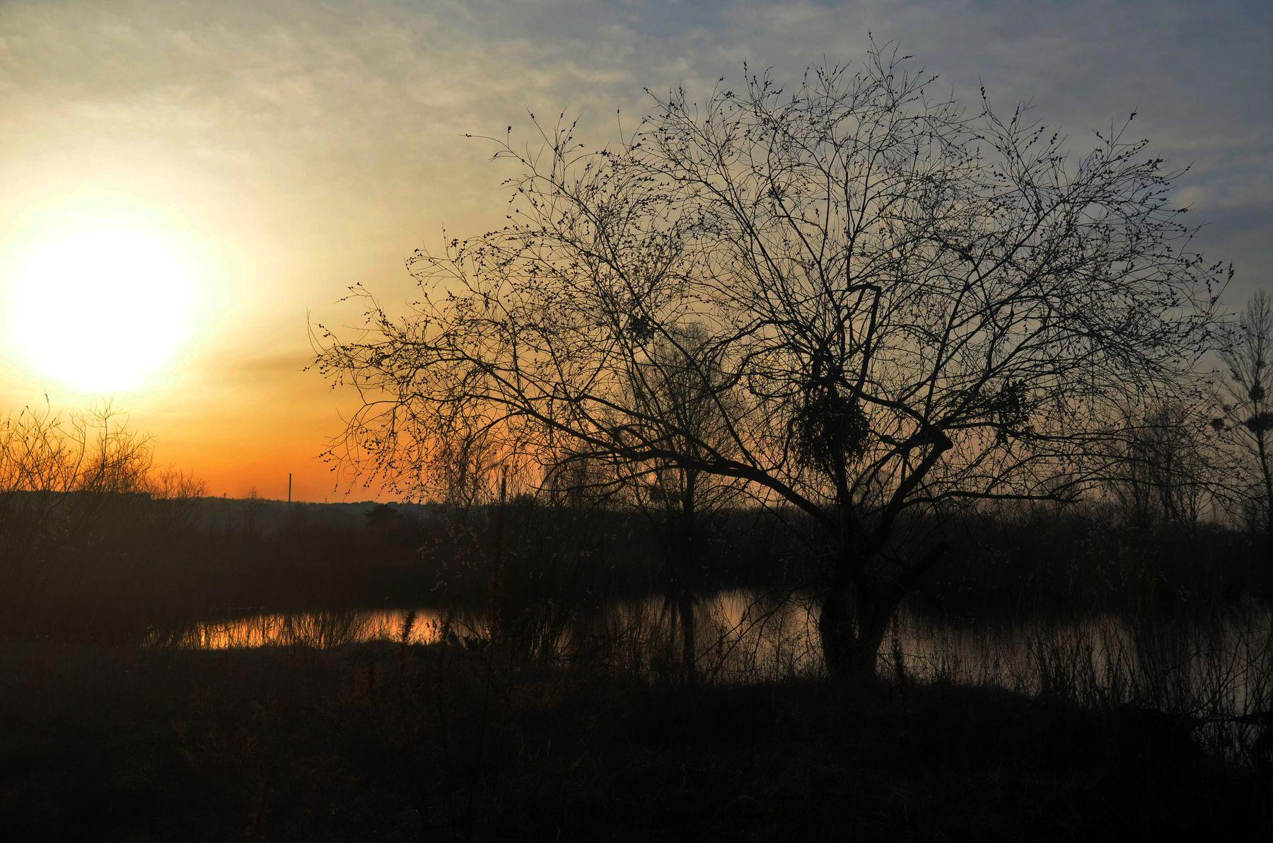 *** весна река вечер вода
