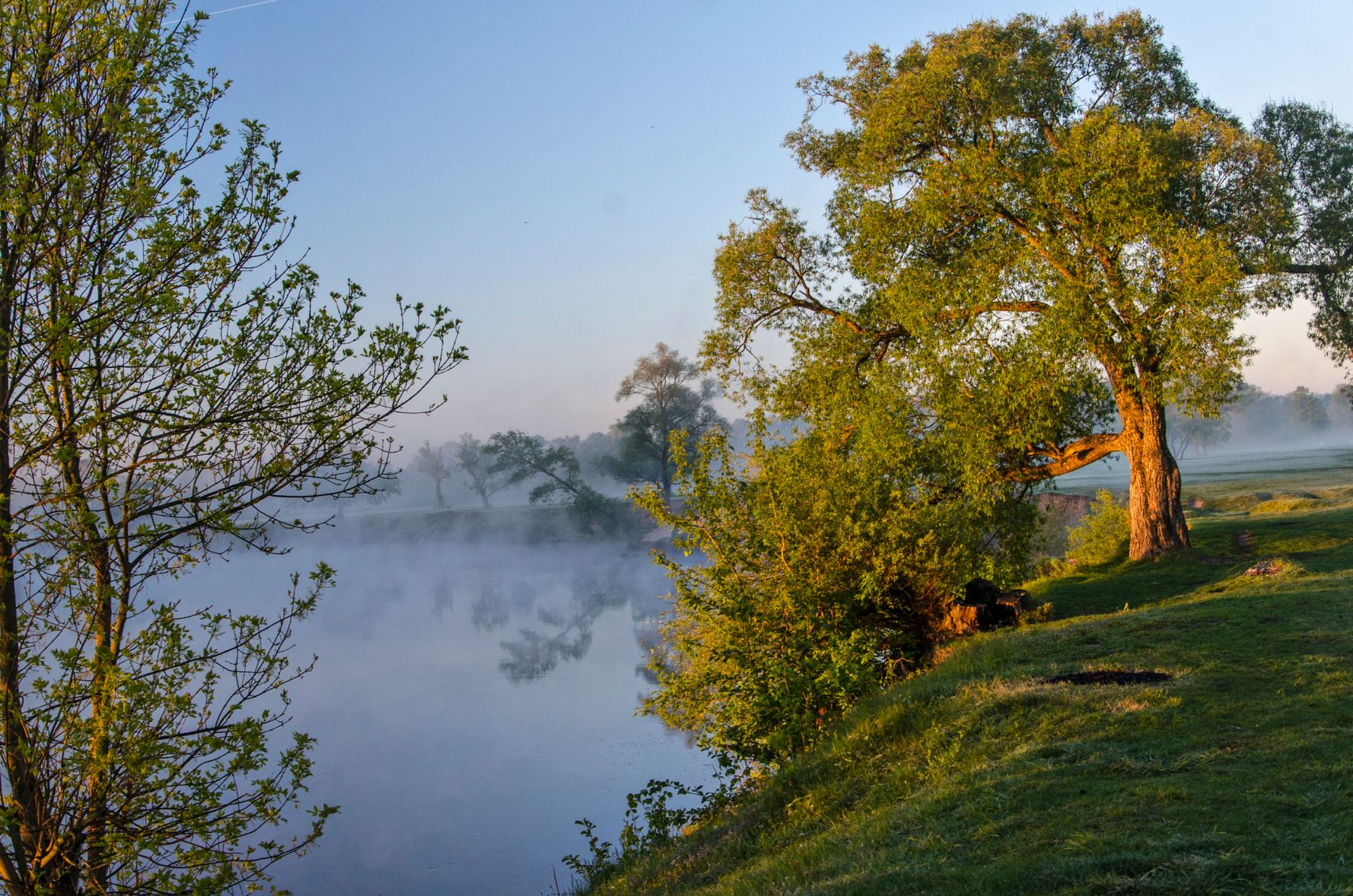 Утро на реке nevant60 березуцкий _александр природа красота пейзаж брянск утро туман