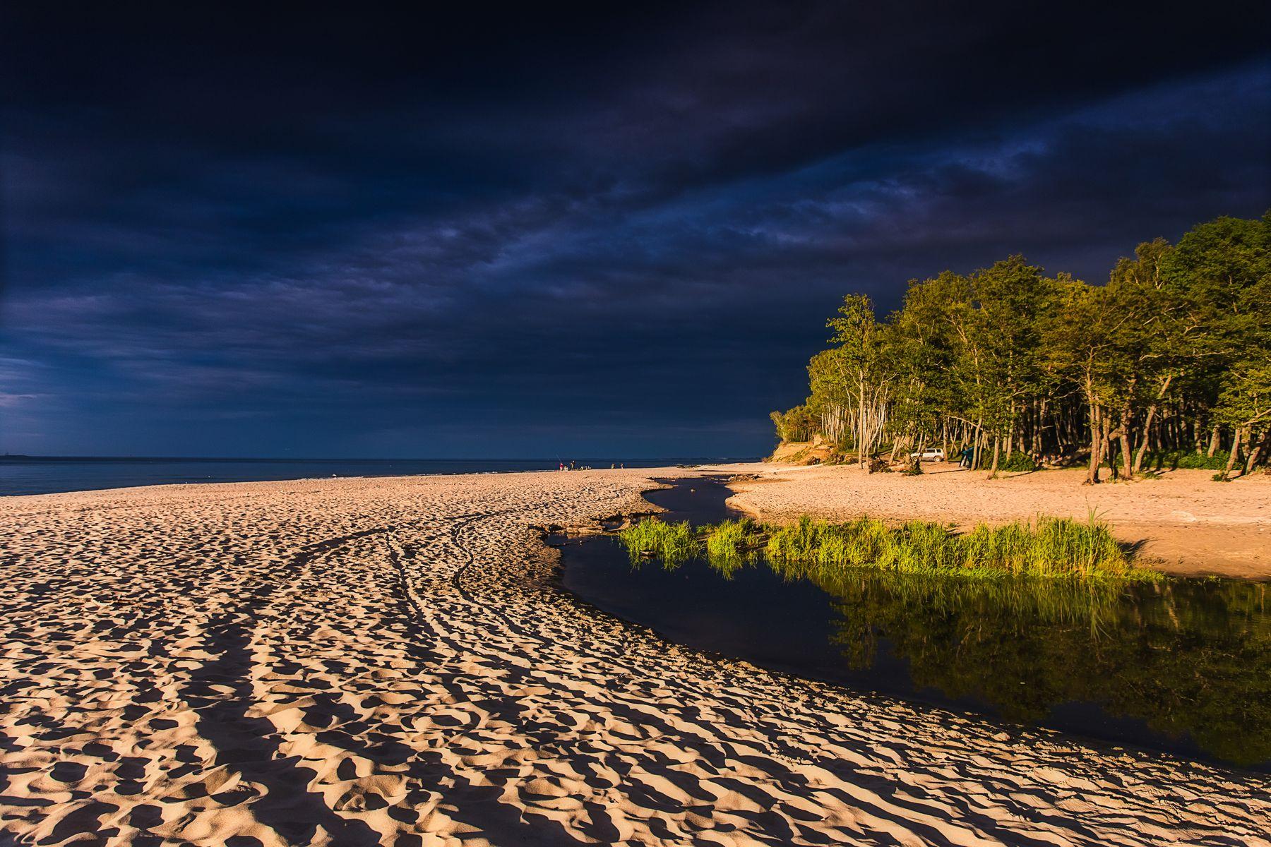 Контраст Балтийского берега Природа пейзаж море берег