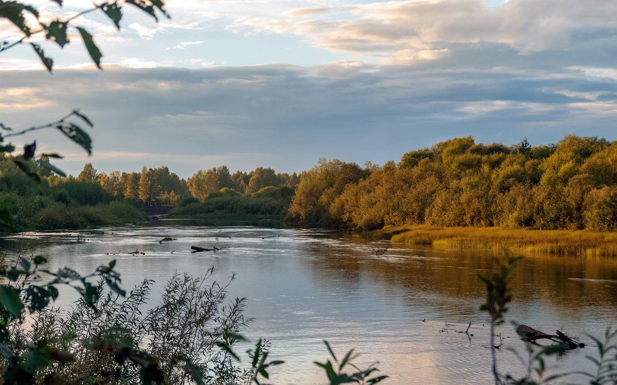 река Нея нея река осень природа пейзаж вид вода отдых путешествие